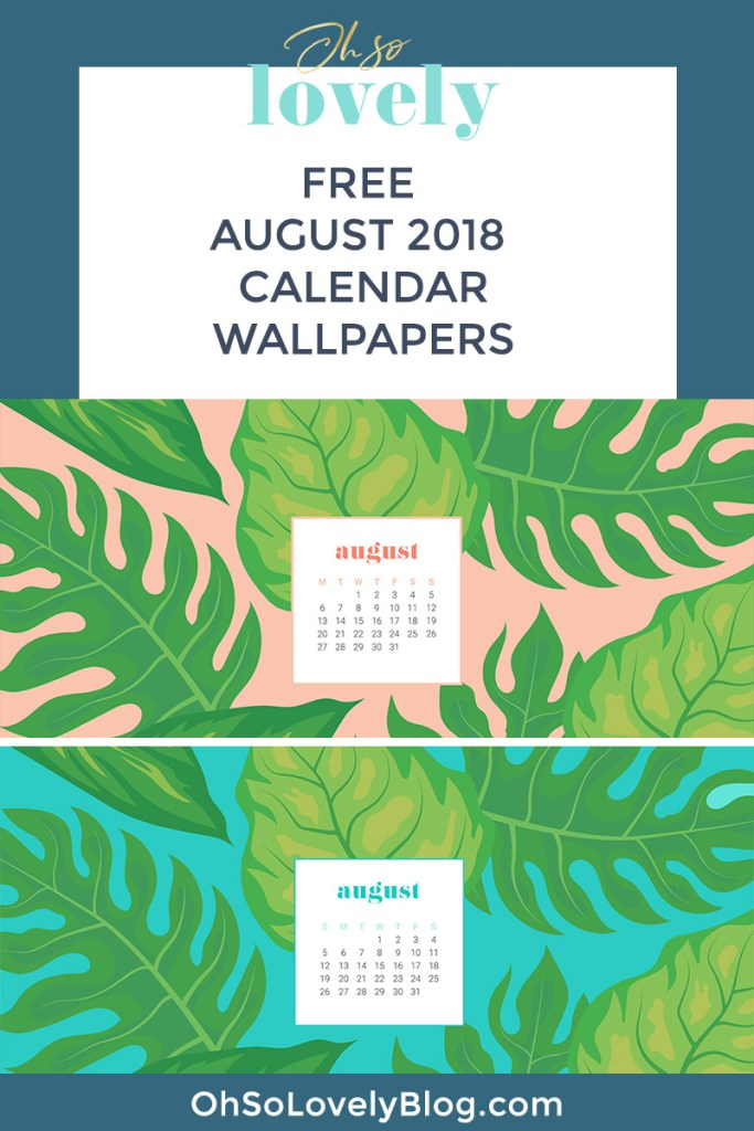 Free August 2018 Tech Wallpaper